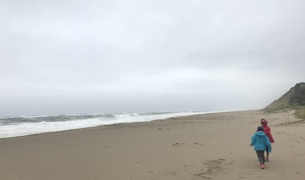 a windy walk during tropical storm jose on national seashore in welfleet, ma