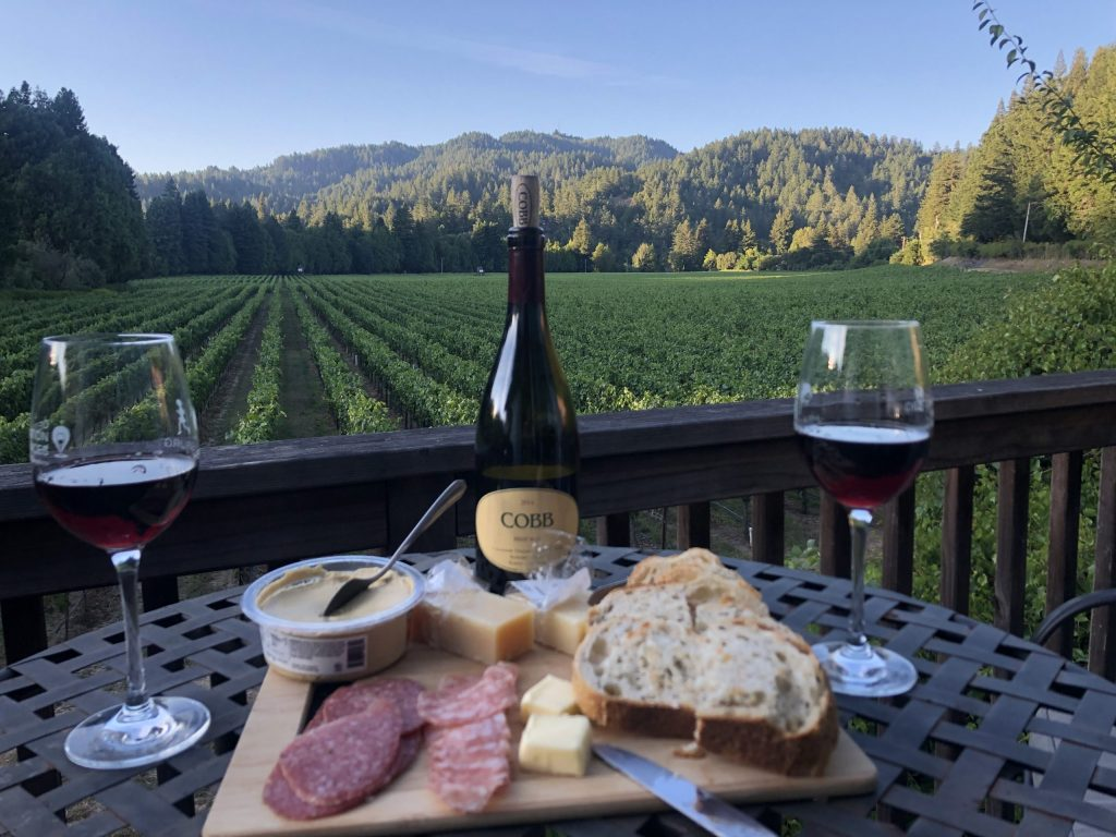 apero california wine red wine cheese vineyard